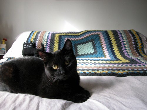 crochet blanket with lloyd